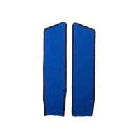 Синие петлицы (черный кант)