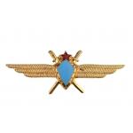 Знак Классности ВВС (общая)